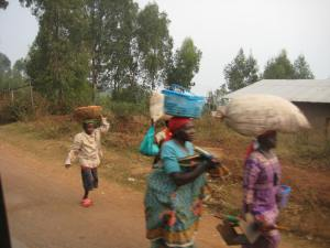 On their way to the market with basket of tomatoes and sacks of potatoes.