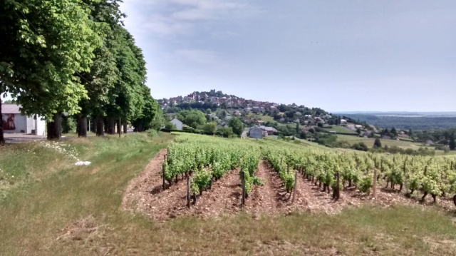 Sancerre on top of the highest hill around the countryside.